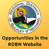 Opportunities Website icon.png